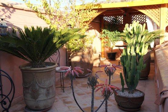 Riad Slawi чудесная терасса