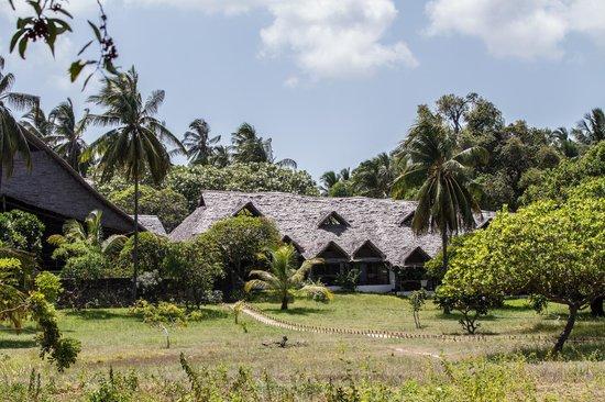 Mafia Island Lodge: vue sur l'hôtel depuis la plage