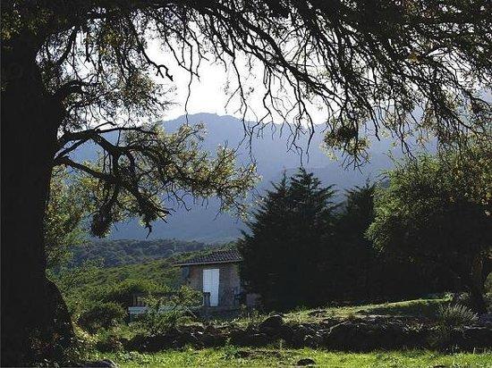 Paraiso Escondido: Manantial cabaña