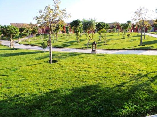 Jungle Aqua Park: Schön viel sehr gepflegtes Grün