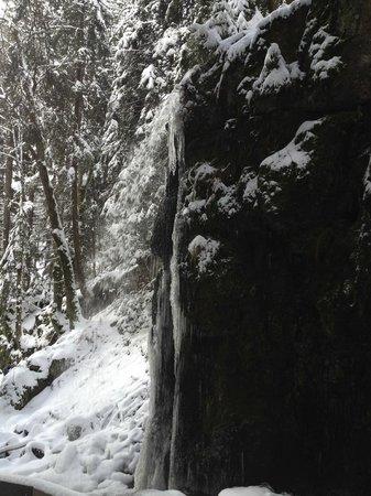 Hotel Grossbach : Mooie watervallen