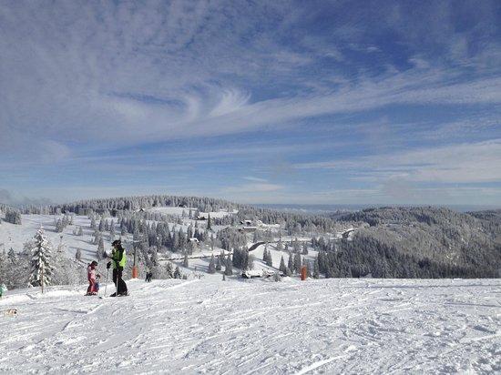 Hotel Grossbach : Skien op de Feldberg