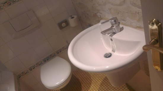 Hotel Europe Saint Severin: Baño (detalle)
