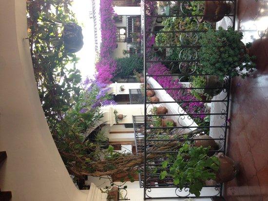 Santo Tomas Hotel: 中庭