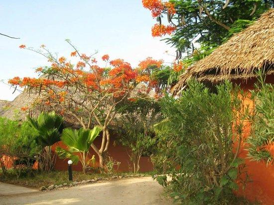 Spice Island Hotel & Resort Zanzibar: Villas