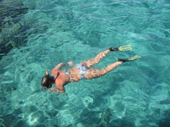 SENTIDO Mamlouk Palace Resort : плаваем с рыбами