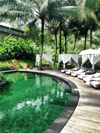 Komaneka at Bisma: Pool ooutside the spa