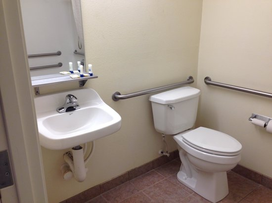 Microtel Inn & Suites by Wyndham Indianapolis Airport : very bare bones bathroom, handicapped accessible