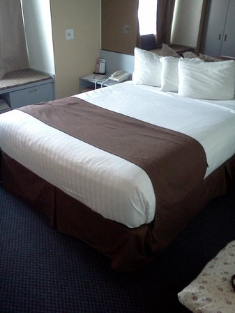 Mt. Pleasant Inn & Suites: Queen bed