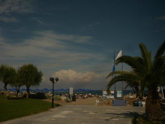 Aquila Rithymna Beach Hotel : Территория отеля