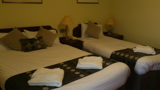 Munster Arms: Newly decorated Twin room