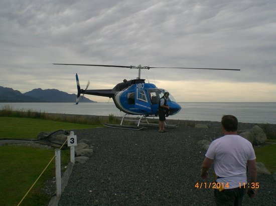 Kaikoura Helicopters: Dan was a great Pilot...just could find the Whales