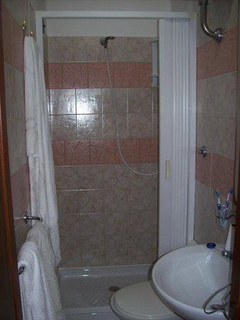 Virginia Hotel: Il bagno micragnoso