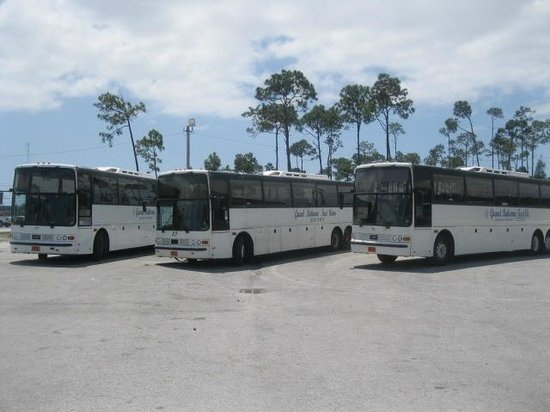 Grand Bahama Taxi & Tours