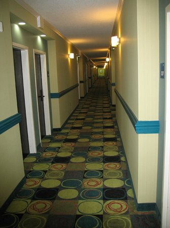 Holiday Inn Express Hotel & Suites Brentwood North-Nashville Area: Hallways