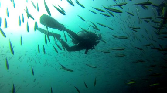 Charm Churee Divers: Epic dive at Chumphon Pinnacle