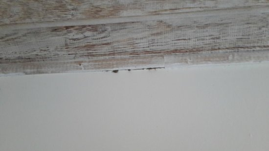 Pousada Boutique Bella Nina : paredes sucias y despintadas
