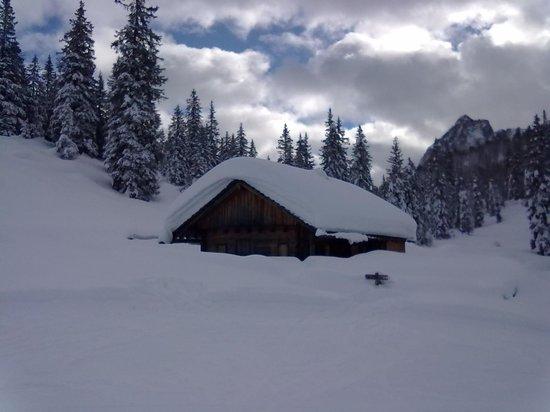 Biovita Hotel Alpi: Dalla croda al passo