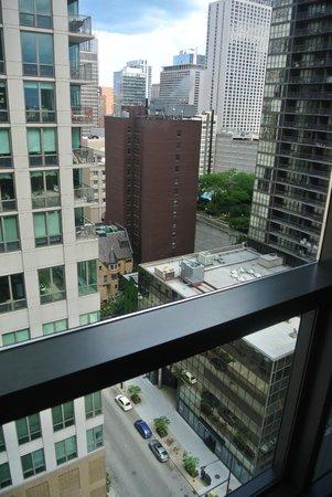 dana hotel and spa: View