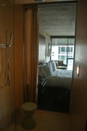 dana hotel and spa : Shower looking in to room