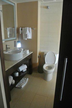 dana hotel and spa : Bathroom
