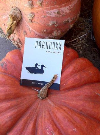 Paraduxx Winery: Talk a walk around