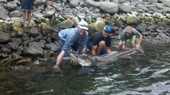 Snake Dancer Excursions : Sturgeon Fishing Charters