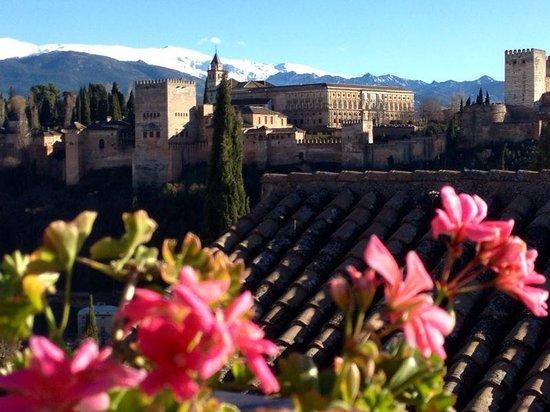 Shine Albayzin: La Alhambra