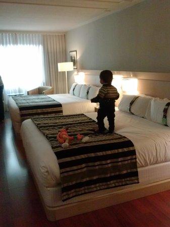 Holiday Inn Andorra : habitacion standar