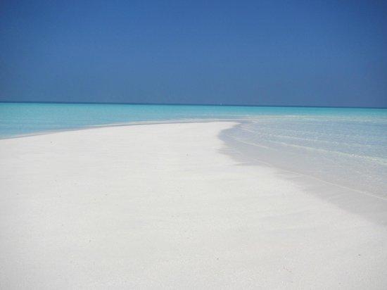 TME Retreats Dhigurah: lingua di sabbia