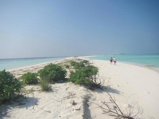 TME Retreats Dhigurah : lingua di sabbia