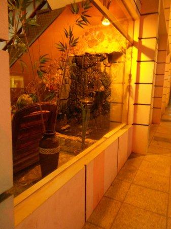 Hotel Playa: Hall de entrada visto desde afuera.
