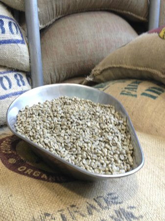 Zest Food Tours of New Zealand : havana coffee's beans before roasting - best flat white!