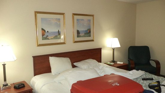 La Quinta Inn Omaha Southwest: Bed