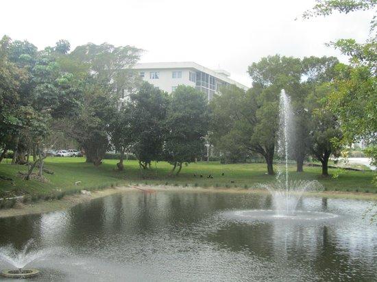 Wyndham Palm-Aire : lago