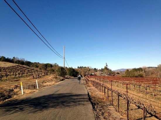 Wine Country Bikes: West Dry Creek Road.  Quiet and flat.