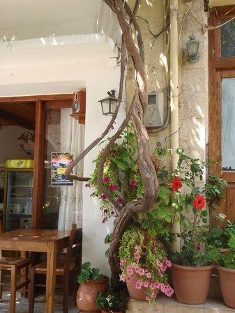 Taverna Geronymos