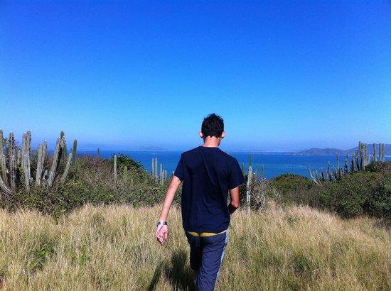 Gringos B&B : Na trilha.