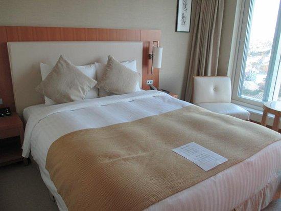 Hotel Associa Shin-Yokohama: アソシア新横浜 モデレートダブル