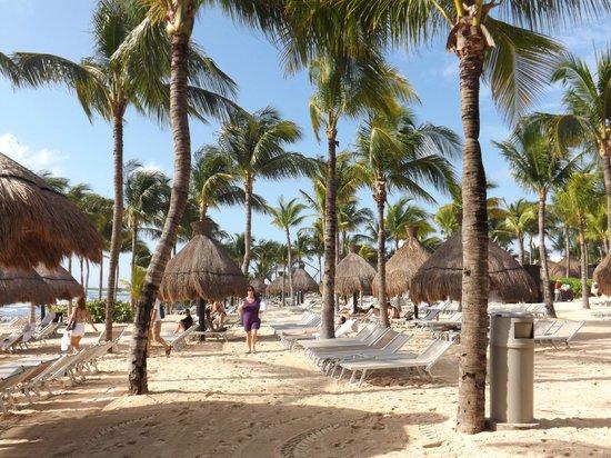 Mayan Palace Riviera Maya : On the beach