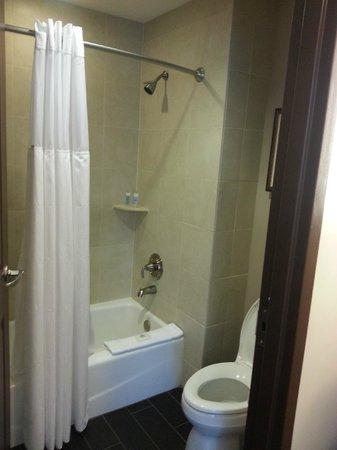 Wyndham Grand Orlando Resort Bonnet Creek: Separate shower/toilet room from sinks