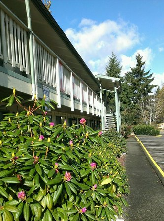Motel Puyallup: East side of East Building