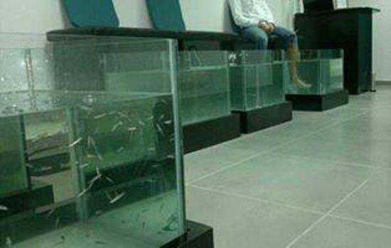 Peixinhos Terapeuticos: Foot Spa