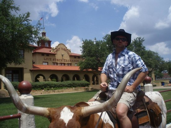 Fort Worth Stockyards National Historic District: Want a photo of you on a longhorn?
