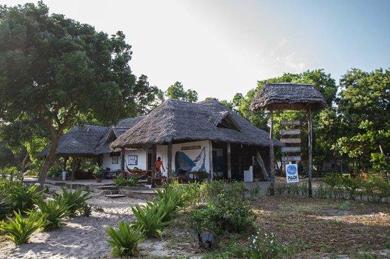 Mafia Island Lodge: Le centre de plongée