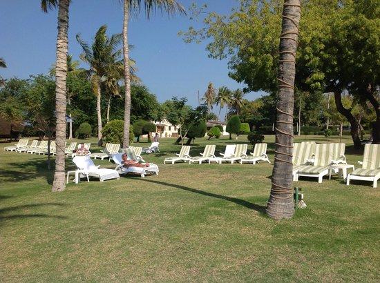 InterContinental Hotel Muscat : meraviglioso giardino