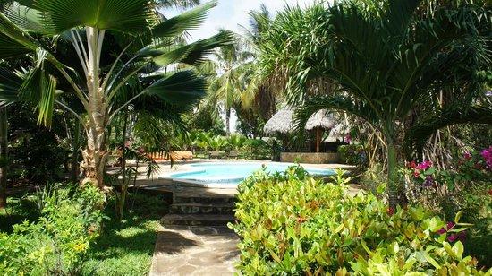 B&B Mela's: View of the pool