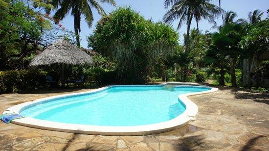 B&B Mela's: The swimming pool