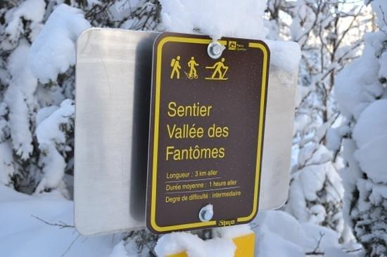 Parc national des Monts-Valin : Début sentier