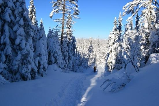 Parc national des Monts-Valin : base du sentier Vallée des Fantômes